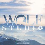logo-design-wolf-studio-01